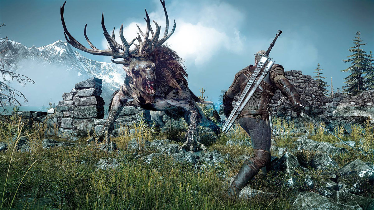 The Witcher 3: Wild Hunt 611