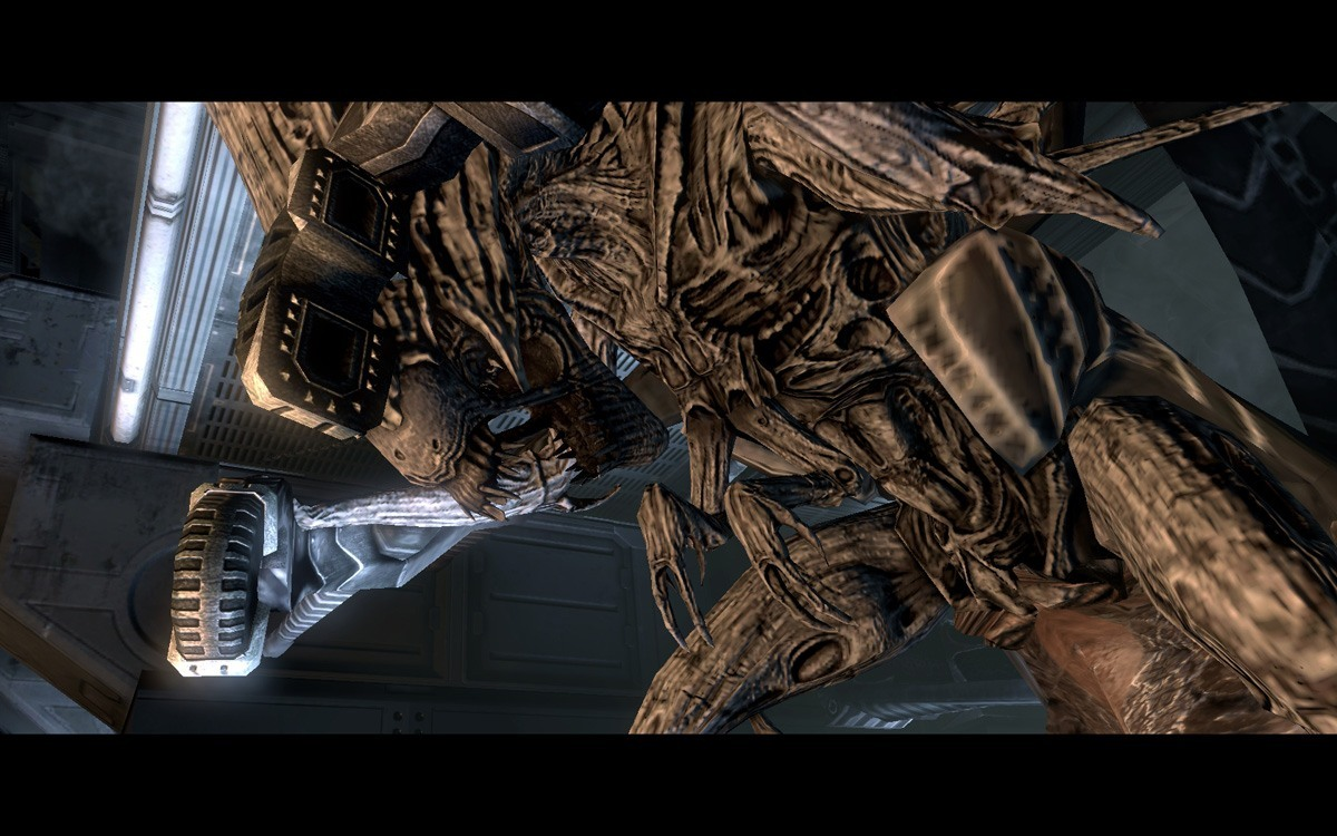 Aliens vs Predator 331